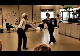 @danceScape Swing into Spring Afternoon Fundraiser, Burlington Centre